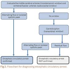 carotid ultrasound report template guidelines for the application of transcranial