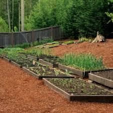 Backyard Raised Garden Ideas Cool 41 Backyard Raised Bed Garden Ideas As Likeable Backyard