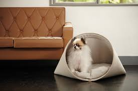 Medium Sized Dog Beds Modern Dog Beds And Accessories From Howlpot Dog Milk