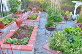 Kitchen Gardening Ideas Entertaining From An Ethnic Indian Kitchen Garden Tour 2 The