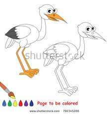 white bird egret colored coloring stock vector 702345286