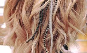 feather hair feather hair extensions all you need to about this year s