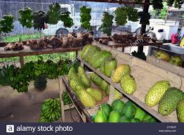 locally grown vegetables and fruits local market pohnpei