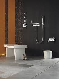 tara logic bath u0026 spa fitting dornbracht