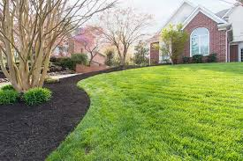 How To Make Your Backyard Private Wonderful How To Make Your Yard Beautiful Images Best Idea Home