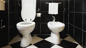 Bidet Picture To Bidet Or Not To Bidet That Is The Bathroom Question Stuff Co Nz