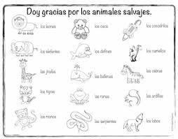 spanish thanksgiving vocabulary coloring pages spanish playground