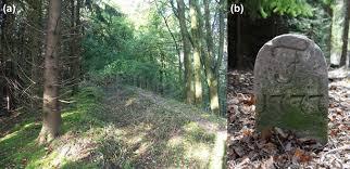 mölder a 2016 small forest parcels management diversity and