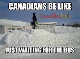 Funny Canadian Memes - ask a canadian how to snowday like a pro herefordshire live