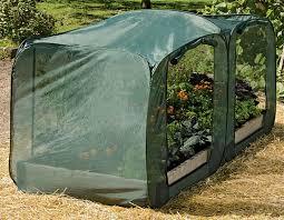 rabbit repellent natural options in the garden gardeners com