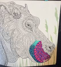 off the shelf books the menagerie colouring book