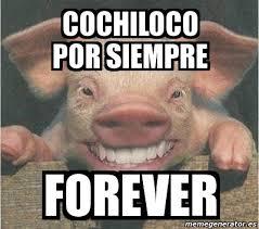 Memes De Cochiloco - meme personalizado cochiloco por siempre forever 2000629