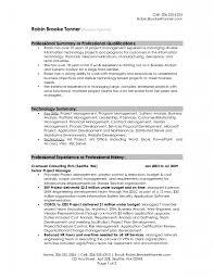 classic resume template executive summary resume examples template classic resume example choose resume template examples sales how