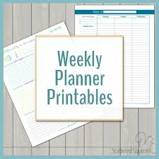 printable january 2016 weekly planner weekly planner printables personal planner