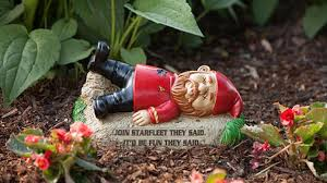 Value Pawn Winter Garden - 16 geeky garden gnomes that will bring down your property value