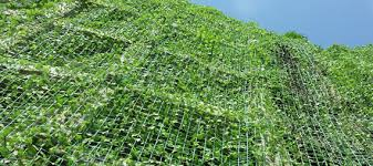 Support For Climbing Plants - how plant support netting supports plants climbing in vertical