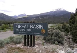 great basin native plants proposed groundwater pipeline threatens great basin ecowatch