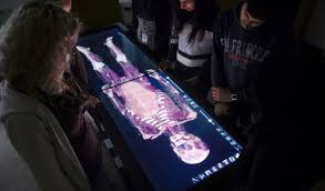 Anatomage Table Massive Open Online Courses Give Universities Global Reach Afr Com