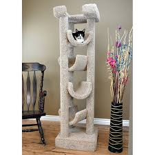new cat condos 72 premier cat tree reviews wayfair