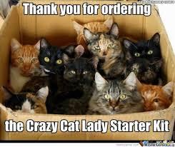 Cat Meme Ladies - crazy cat lady crazy cat lady cat lady and cat
