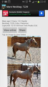 mustang adoptions blm mustang adoption gallery android apps on play