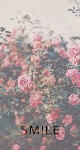 fotos para fondo de pantalla facebook feliz día de la primavera imágenes gratis para facebook pinterest