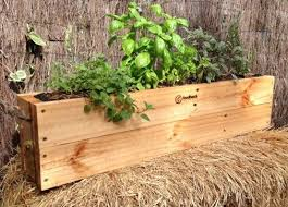 diy self watering herb garden self watering herb gardens here s a quick and easy d i y