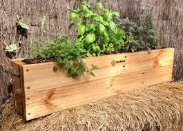Diy Self Watering Herb Garden Self Watering Herb Gardens U2026 Here U0027s A Quick And Easy D I Y