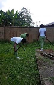 How To Cut Weeds In Backyard Gossip Gists Everything Unlimited Corpers Forced To Cut Weeds