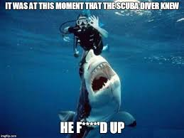 Scuba Meme - image tagged in memes shark meanwhile in imgflip