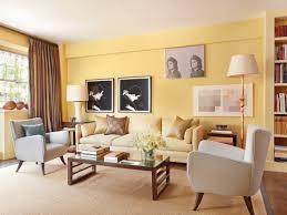 Livingroom Themes 1000 Living Room Ideas On Pinterest Living Room Inspiration Living