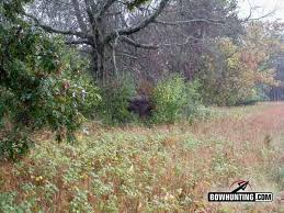 Bow Hunting Box Blinds Ground Blinds Thinking Outside Of The Box