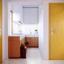 narrow kitchen design eurekahouse co