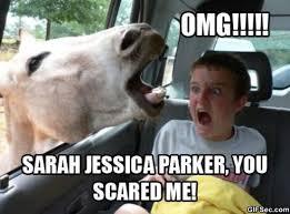 Jessica Meme - sarah jessica parker meme viral viral videos