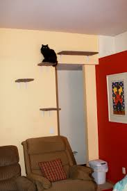 Wall Shelves For Cats 49 Best Cat Decor Images On Pinterest Cat Shelves Cat Stuff And