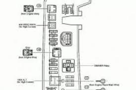 toyota yaris car stereo wiring diagram wiring diagram