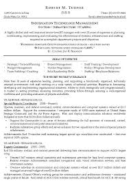 Samples Of A Professional Resume by Information Technology Management Resume Example It Sample Resumes