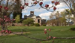 Flower Area - 40 most beautiful college campuses in rural areas great value
