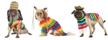 pets costumes halloween ruff draft adorable pet costumes for your puppies u0026 kittens