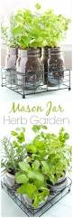 diy herb garden in mason jars crafts unleashed diy herb garden