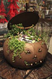 74 best fairy gardens are enchanting images on pinterest mini create a spooky mini garden like this one we planted in a jack o