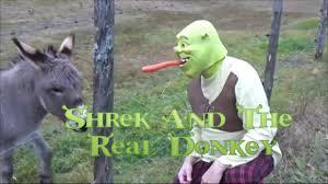 donkey and shrek funny video youtube