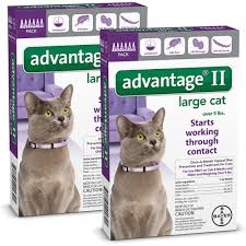 4 month advantage ii flea control small cat for cats 5 9 lbs