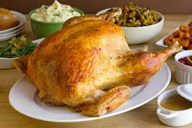 turkey fowl bird thanksgiving wallpaper 5069x3378