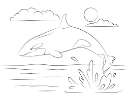 coloring page killer whale cute killer whale is jumping out of water coloring page free
