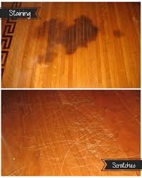 Most Durable Laminate Wood Flooring The Most Pet Friendly Types Of Flooring For Your Home U2022 Builders