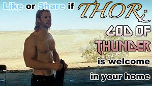 Thor Birthday Meme - like share for thor the steel shark photos designs and other