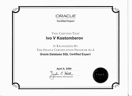 Oracle Dba Resume Example Oracle Performance Tuning Resume Free Resume Example And Writing