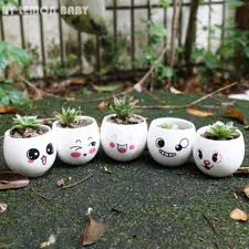 Cute Succulent Pots Online Get Cheap Ceramic Pot Cute Aliexpress Com Alibaba Group