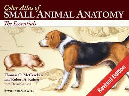 Colour Atlas Of Human Anatomy Color Atlas Of Small Animal Anatomy The Essentials Revised